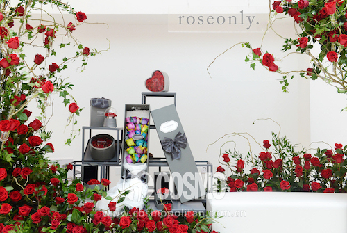 roseonly花墙